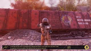 Fallout 76 whats to come from this