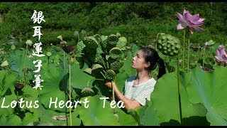 Video : China : Lotus seeds soup and tea (LianXin Cha)