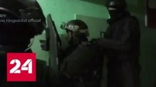 Драма на улице Молостовых стала итогом конфликта между соседями - Россия 24