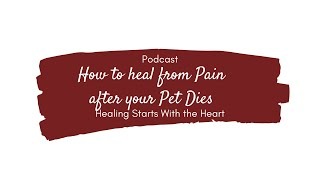 How to Heal From The Pain After Your Pet Dies