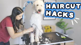 Grooming at 🏠? WATCH! Goldendoodle FULL trim & bath during lockdown