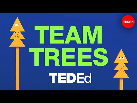 Let's plant 20 million trees together! #TeamTrees