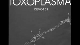 Toxoplasma Demos 82 03 Heile Welt