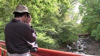 修善寺まち歩き!人気の観光スポットを巡ります/静岡県伊豆市修善寺第189回日本全国はじまるスタジオ