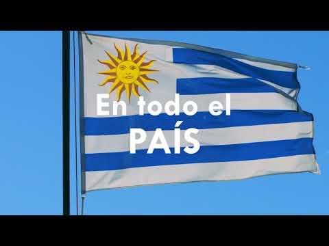 Jura de Fidelidad a la Bandera 2019