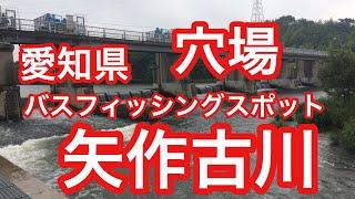 矢作古川愛知県バスフィッシングスポットブラックバス