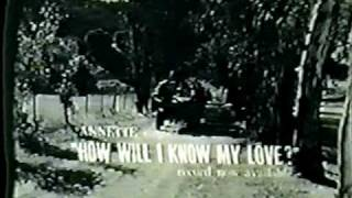"Annette Funicello ""How Will I Know My Love?"" Commercial"