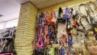 Miller's Tack & Saddlery   Odessa, TX   Horse Equipment