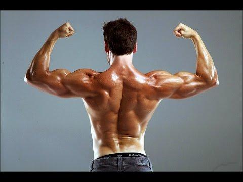 Les muscles répondent pour le coup