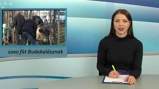 TV Budakalász / Budakalászi 7 / 2019.11.29.
