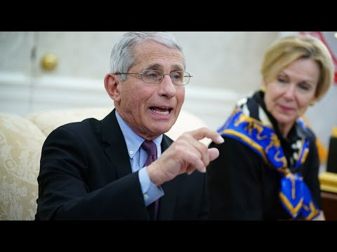 Fauci Is Almost Certain Virus Will Return in Winter, Is Optimistic About a Vaccine
