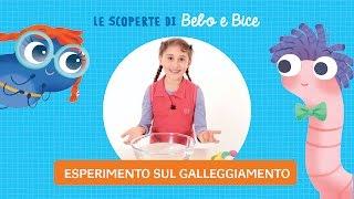Esperimenti con l'acqua per bambini da fare in casa | Le scoperte di Bebo e Bice