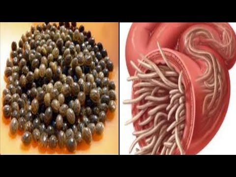 Giardia celiac disease