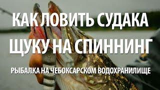 Рыбалка в апреле на чебоксарском водохранилище