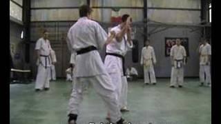 Gambar cover Shinseikai Video Tecnica - Sabaki - Kakato Otoshi