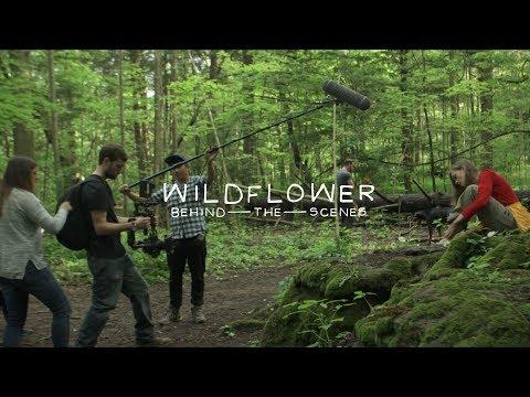 WILDFLOWER BTS