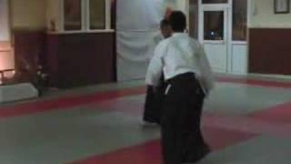 preview picture of video 'Shimizu Sensei. Ozoir La Ferriere, France, 03-18-2008'
