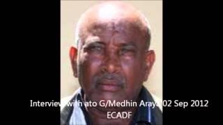 Interview With Ato Gebremedhin Aaraya  , Artist Telela Kebede ,Poet Henok Yeshitla 02 Sep 2012