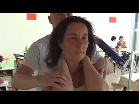 Csipkebogyó ízületi kezeléshez