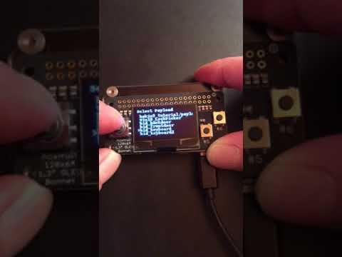 P4wnP1 OLED Bonnet mod - Hacking zum Spass