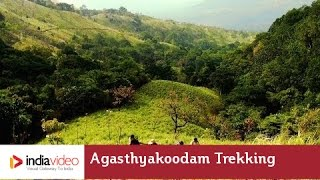 Feel God on a challenging trek to Agasthyakoodam