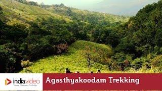 Feel God on a challenging trek to Agasthyakoodam