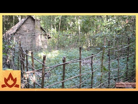 Primitive Technology: Sweet potato patch