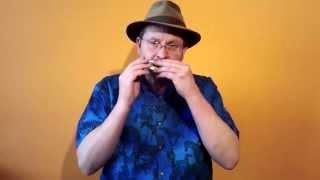 The 12-hole SLIDE DIATONIC Harmonica - for Authentic Irish Playing