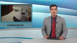 TV Budakalász / Budakalász Ma / 2021.07.14.