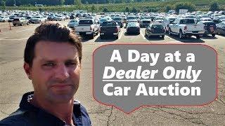 Dealer Only Auto Auction Access
