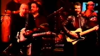 Michael Stanley and Joe Walsh  (and the Resonators )