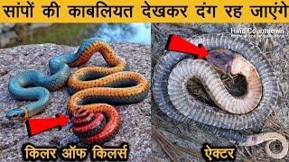 10 अनोखे सांप जिनकी अनोखी काबलियत देखकर वैज्ञानिक भी हैरान है | 10 Most Unique Snakes