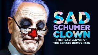 Even MSM Says #Schumer Lost