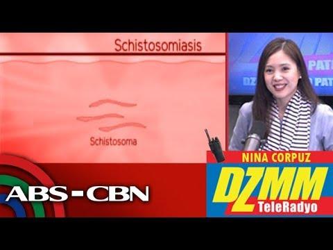 Tablets mula sa mga worm at tapeworms