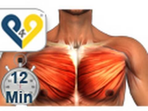 Isoflawon und die Erhöhung der Brust