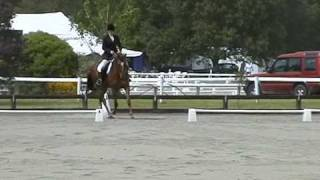preview picture of video 'Maybe Monday at Canterbury dressage Champs 2006 - aged 5'