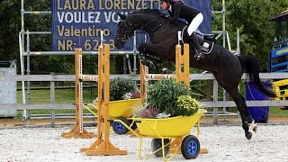 preview picture of video 'Voulez Vous - Laura Lorenzetti - Lanaken 2013 - FEI World Breeding Championship for Young Horses'