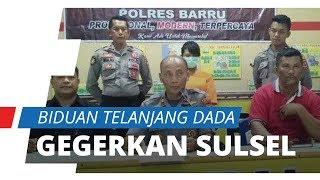 Fakta-fakta Penyanyi Dangdut Telanjang Dada di Panggung Hebohkan Warga Sulawesi Selatan