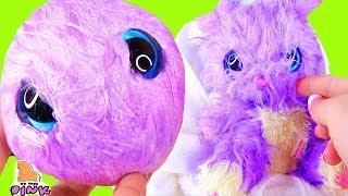 ИГРУШКА - НОВИНКА! ФИОЛЕТОВЫЙ СЮРПРИЗ ПИТОМЕЦ! SCRUFF a LUV FUN PET CARE PLAY Видео для Детей