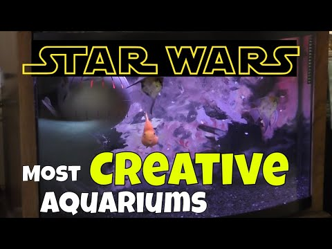 How This Hobbyist Uses His Creativity To Create Unique Aquariums - Lord Of The Rings And Star Wars
