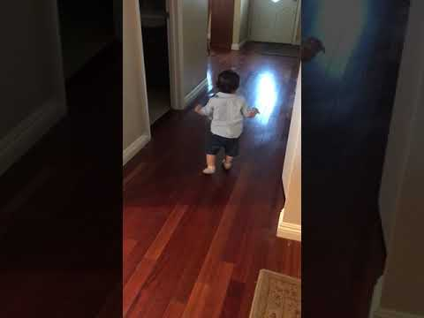 Cute 9 month old walking