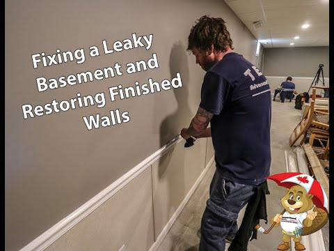 How to fix a leaky basement using WaterGuard and restoring walls with Everlast.