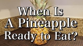 How I Know When A Pineapple Is Ripe & How to Cut It  (DIY)