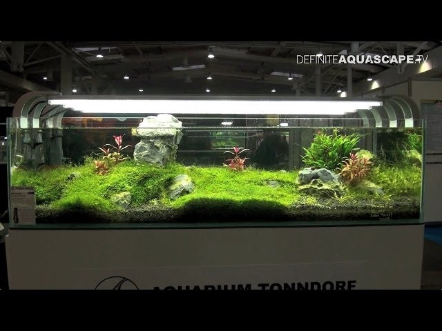 Aquarium Ideas - planted aquariums of Heimtiermesse 2014, Hannover, pt. 1