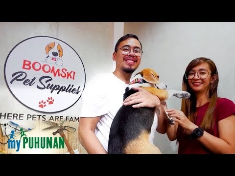 , title : 'Boomski Pet Supplies owners share the success story of their business | My Puhunan