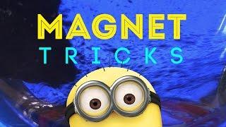 Gambar cover MAGNET TRICKS FOR KIDS!