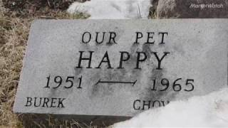 People spend small fortunes to bury pets at this cemetery