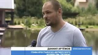 Платная рыбалка в московской области чеховский район