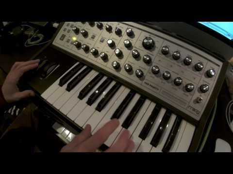 Funky jam on a Moog Sub Phatty Synthesizer