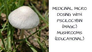 Medicinal Micro Dosing With Pscilocybin (Magic) Mushrooms (educational)